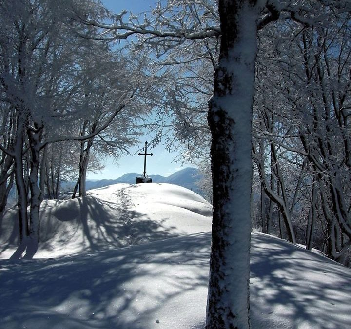 Monte Belvedere