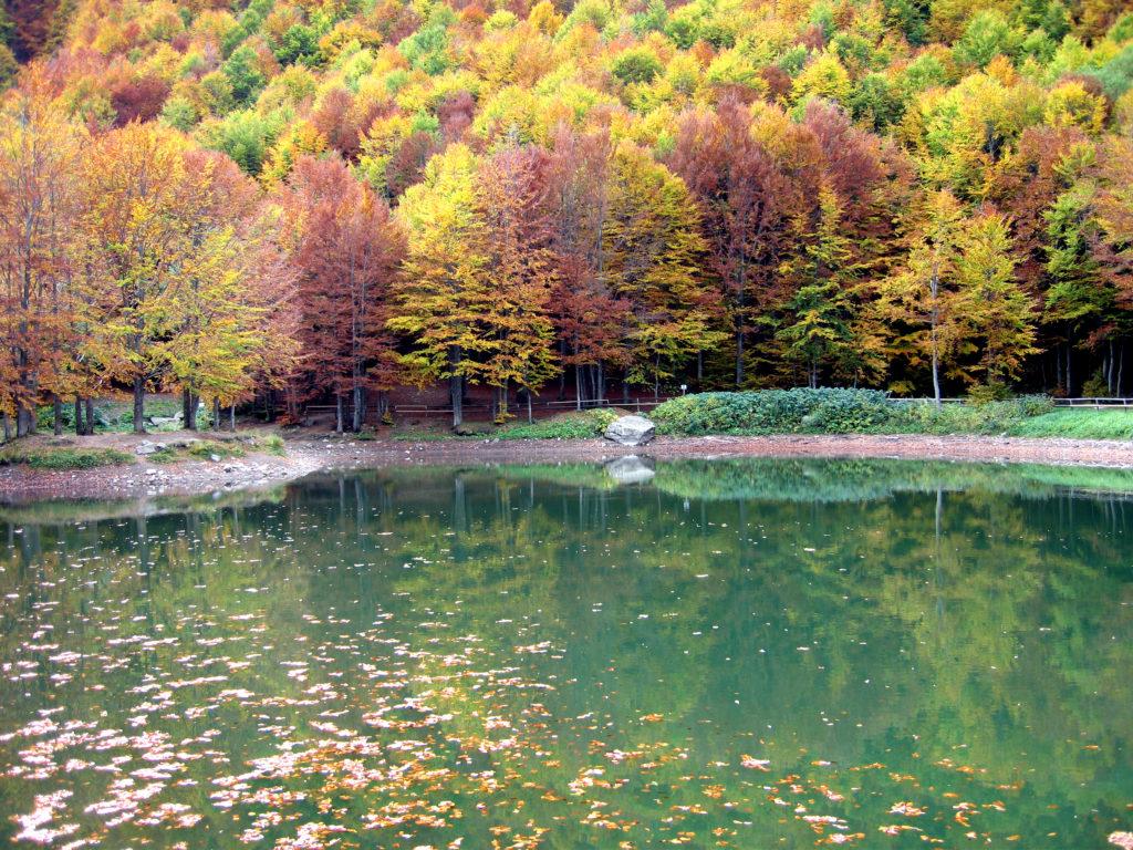 Laghetto Cavone foliage