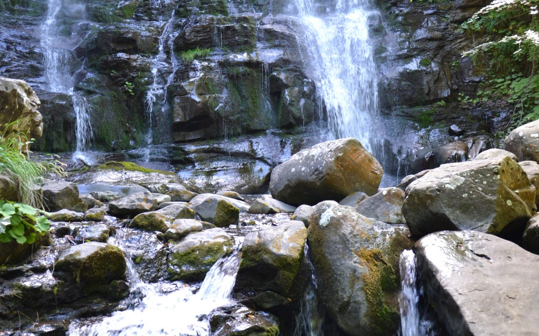 Madonna dell'Acero e le cascate del Dardagna