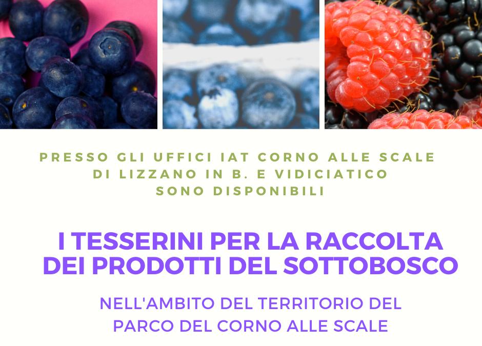 TESSERINI RACCOLTA PRODOTTI DEL SOTTOBOSCO 2020