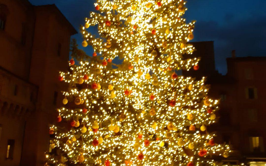 L'albero di Natale a Bologna